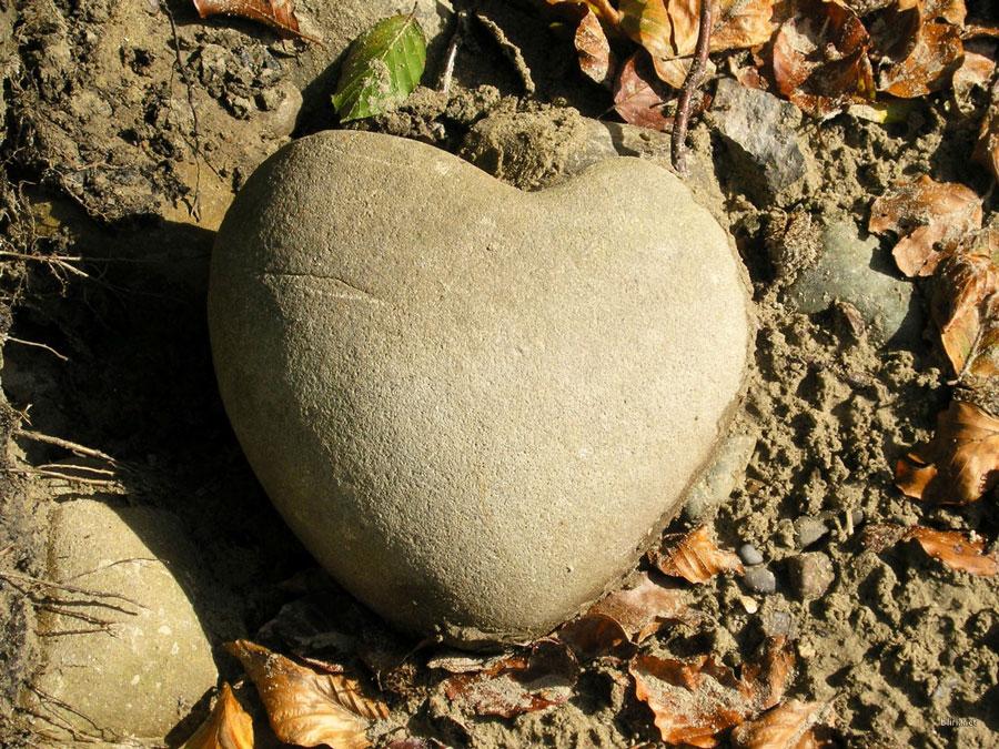 پیامبر، چگونه دل های سنگ را نرم کرد؟!