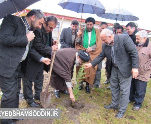 گزارش تصویری / کاشت نهال توسط امام جمعه انزلی در آستانه روز درختکاری